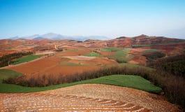Brown-Sandlandwirtschaftslandschaft am Mittag mit Bergen und grünen Hügeln Stockfotos