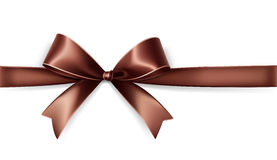 Brown satin bow Stock Photography