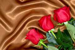 Brown satin fabric and roses closeup Stock Image