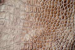 Brown scales macro exotic background, embossed under the skin of a reptile. Texture genuine leather close-up. Brown scales macro background, embossed under the Royalty Free Stock Photos