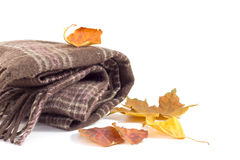 Brown scarf and autumn leaves on a white background Royalty Free Stock Image