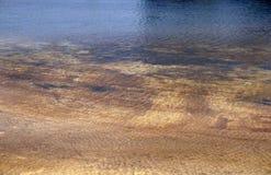 Brown-Schmutzwassersumpfschmutzwasser vom Fabrikabfall Lizenzfreies Stockbild