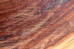 Brown scratched wooden cutting board. Wood texture stock images