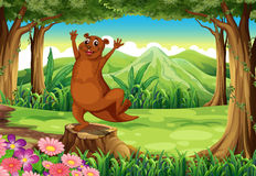 A brown sealion at the forest standing above the stump Royalty Free Stock Photos