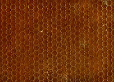 Brown Seamless Texture Royalty Free Stock Image