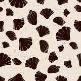 Brown seashells on grange background Stock Photo