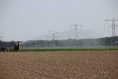 Brown secó los campos causados por la sequedad del verano de 2018 en los Países Bajos fotos de archivo