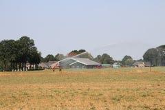 Brown secó los campos causados por la sequedad del verano de 2018 en los Países Bajos fotos de archivo libres de regalías