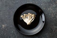 Brown shimeji mushrooms Royalty Free Stock Photo