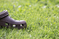Brown shoe. Half of a shoe left in grass field Royalty Free Stock Photography