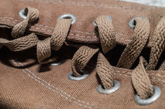 Brown shoelace Royalty Free Stock Photo
