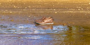Brown shoes on the edge of the shore near the water royalty free stock images