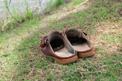 Brown shoes leather old on grass select focus with shallow depth of field.  Royalty Free Stock Images