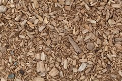 Brown shredded wood Royalty Free Stock Image