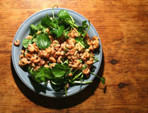 Brown shrimp on watercress Royalty Free Stock Photography