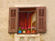 Brown Shutters in Piran Royalty Free Stock Images