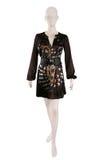 Brown silk dress Stock Image
