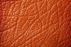 Brown skóra zdjęcia stock