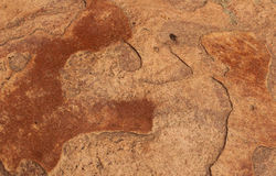Brown skały tekstura obraz royalty free