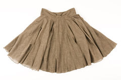 Free Brown Skirt Royalty Free Stock Images - 7898609