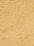 brown skrynklade gammal paper textur Royaltyfria Bilder