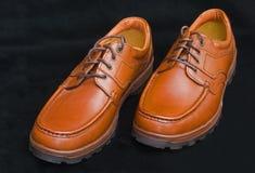 brown snört åt robustt gå för skor arkivbild
