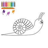 Brown snail on white background. Cartoon style Royalty Free Stock Photography