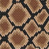 Brown snake seamless pattern Royalty Free Stock Photo