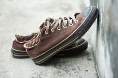 Brown sneaker Royalty Free Stock Photo