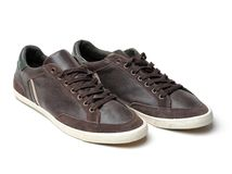 Brown sneakers on isolate white background Royalty Free Stock Photo
