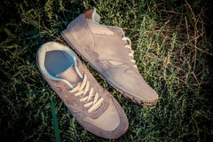 Brown sneakers, men's shoes Royalty Free Stock Photo