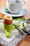Brown soft boiled egg in the eggcup. Stock Photo