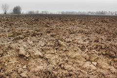 Brown soil Stock Photography