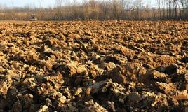 Brown soil Royalty Free Stock Image