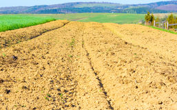 Brown soil. Of an agricultural field in the mountains stock photo