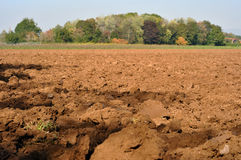 Brown soil Stock Photo