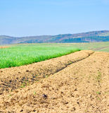 Brown soil of an agricultural field. In the mountains royalty free stock images