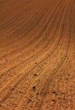 Brown soil background Royalty Free Stock Photos