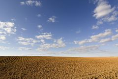 Brown soil field Royalty Free Stock Image