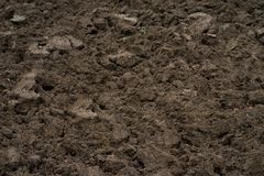 Brown soil in field. Closeup Royalty Free Stock Photo