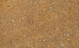 Brown soil Royalty Free Stock Photo
