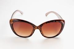 Brown-Sonnenbrillen lizenzfreie stockbilder