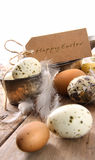 Brown speckled eggs  with easter card Royalty Free Stock Images