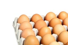 Chicken eggs in the cardboard egg tray on white background stock photos