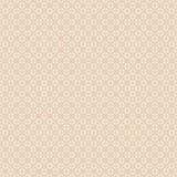 Brown-Spiegelmandala-Musterbeige exemplar Brown-Spiegelmandala-Musterbeige exemplar vektor abbildung