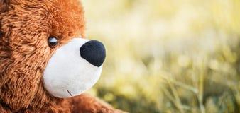 Brown-Spielzeugbärngesicht auf undeutlichem Hintergrund Stockfotografie