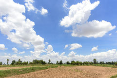 Brown spring field and cloudy sky Royalty Free Stock Image