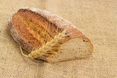 Brown sprouted bread and wheat ear closeup on sackcloth. Partly cut oval loaf of the wheat and rye sprouted bread with added whole sprouted wheat grains, rye Royalty Free Stock Photos