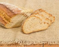 Brown sprouted bread and wheat ears on sackcloth closeup. Partly sliced loaf of the wheat and rye sprouted bread with added whole sprouted wheat grains, rye malt Royalty Free Stock Photo