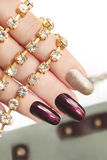 Brown srebra manicure Fotografia Royalty Free